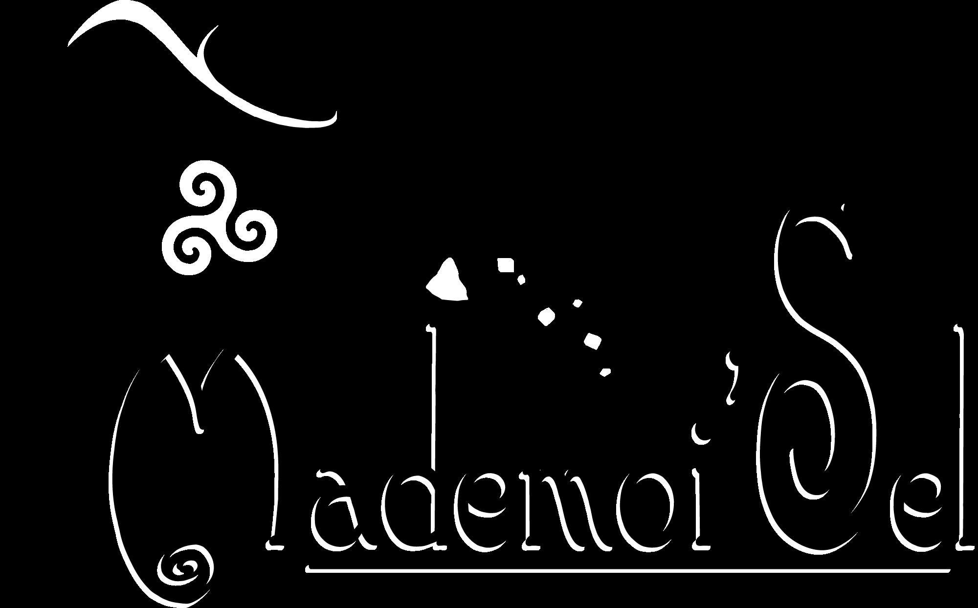 Logo Mademoi'Sel de Guérande
